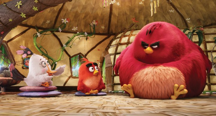 angrybirds_014